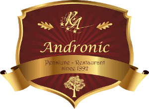 Logo complet Pensiunea Andronic